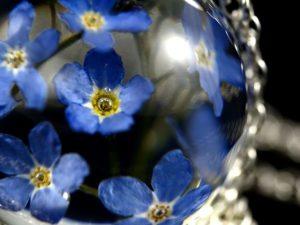 niebieskie kwiaty biżuteria