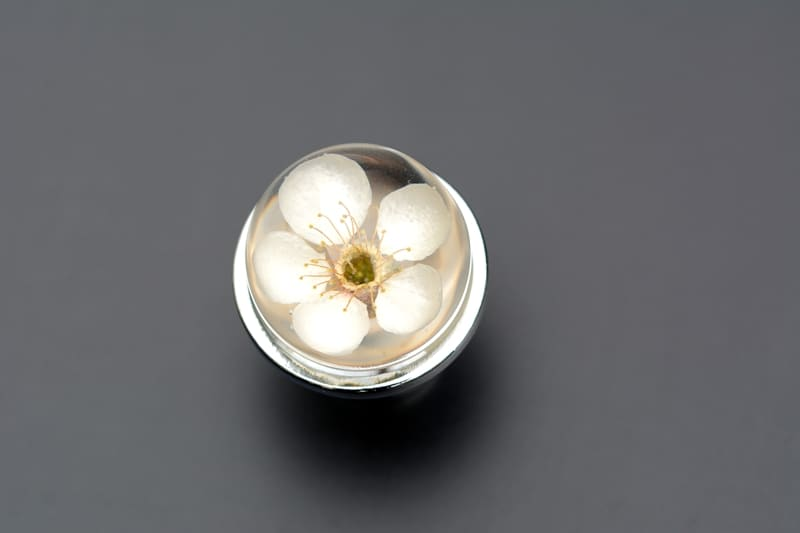 Gałka do mebli z białym kwiatem wiśni.