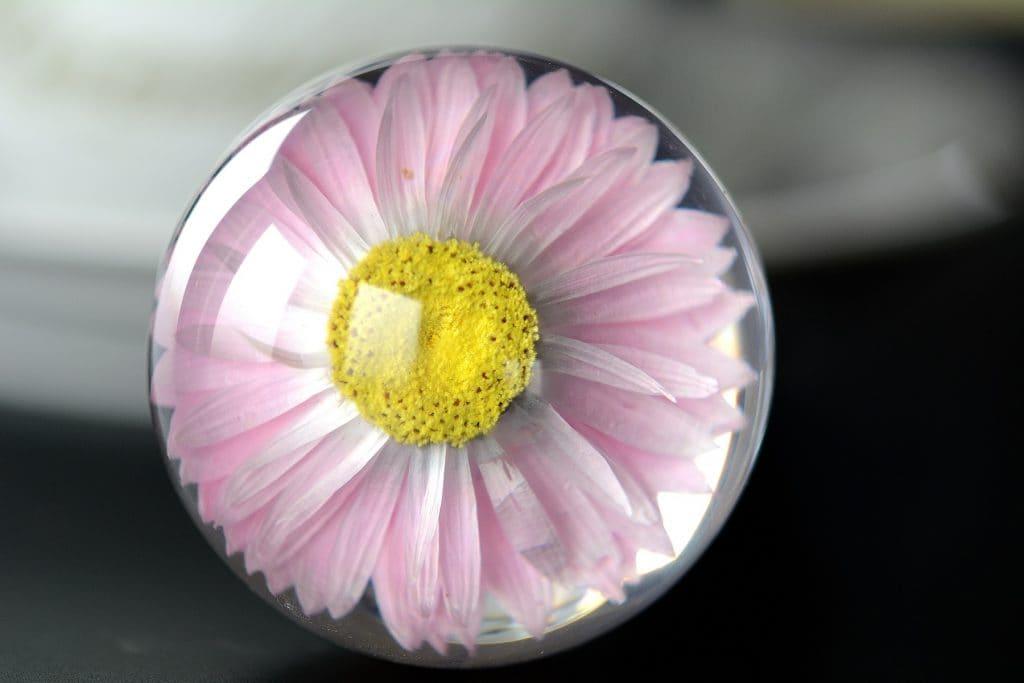różowy kwiat kula żywica