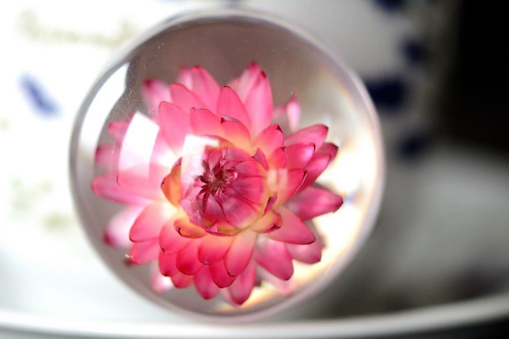 home decor kwiat w żywicy