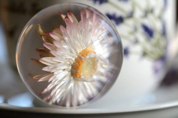 różowy kwiat żywica kula