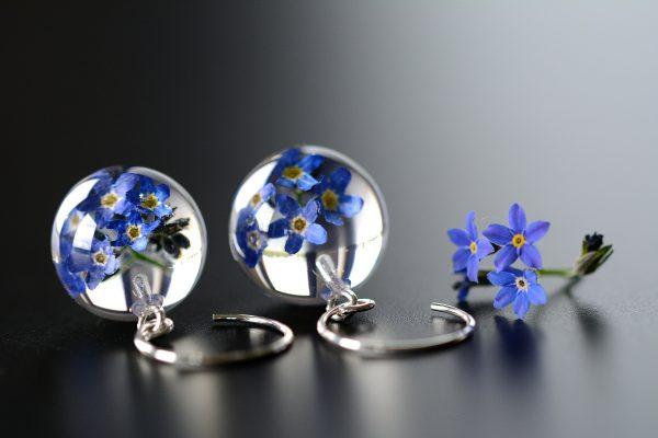 caldesia kwiaty